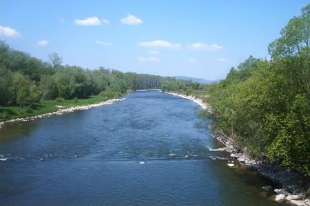 il fiume Poprad un area di importanza europea avvelenato con cianuro 9d4ec236921