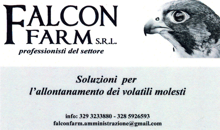 falconfarm_1